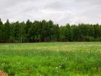 Продажа земли Симферопольское шоссе Щербинка. Земельный участок под придорожный сервис. 0,05 га