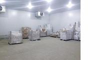 Аренда холодильной камеры ВАО метро Шоссе Энтузиастов, 227 кв.м.