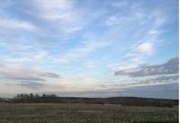 Продажа земли под строительство склада,  Новорижское шоссе, 25 км от МКАД, Павловская слобода. 0,5-15 Га.
