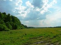 Земельный участок Минское шоссе, 41 км от МКАД, Петелино