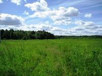 Земельный участок Дмитровское шоссе, 70 км от МКАД, Вороново