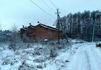 Продажа земли под базу отдыха Дмитровское шоссе, 47 км от МКАД. 4,4 Га.