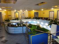 Аренда помещения под медцентр, клинику СВАО, Свиблово м. 603 кв.м.