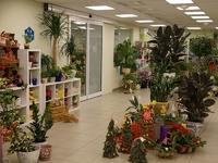 """Продажа арендного бизнеса в Митино: магазин """"Цветы"""". 404,9 кв.м."""