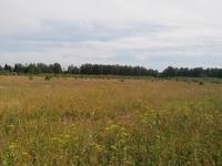 Продажа земли под строительство склада Ленинградское шоссе, 68 км от МКАД, Клин. 0,2-17,5 Га.