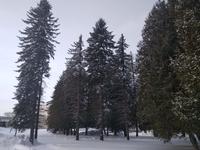 Продажа земли под базу отдыха в Московской области, Новорижское шоссе, 75 км от МКАД Акатово д. 15 Га.