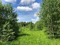 Продажа земли под базу отдыха, бывший пионерский лагерь в Московской области, Новорижское шоссе, 75 км от МКАД Тиликтино. 14 Га.