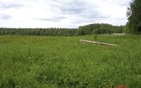 Продажа земельного участка 11,7 Га под строительство жилья, Новорижское шоссе, 125 км от МКАД.