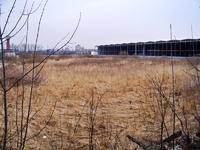 Аренда земли Лыткарино, Новорязанское шоссе. 1-10 га